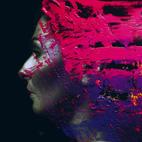 Steven Wilson: Hand. Cannot. Erase.