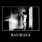 Bauhaus: In The Flat Field