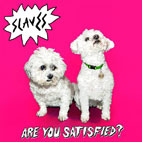 Slaves: Are You Satisfied?