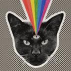 Never Shout Never: Black Cat