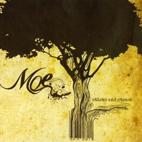 Moe.: Sticks And Stones