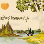Albert Hammond, Jr.: Yours To Keep