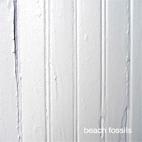 Beach Fossils: Beach Fossils