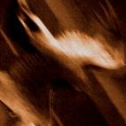 Agalloch: Ashes Against The Grain