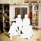 Albert Hammond, Jr.: Como Te Llama?