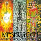 Meshuggah: Destroy, Erase, Improve