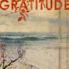 Gratitude: Gratitude
