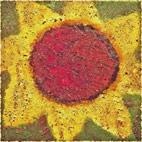 Never Shout Never: Sunflower