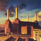 Pink Floyd: Animals
