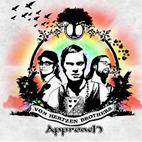 Von Hertzen Brothers: Approach
