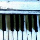 Davin Wood: Invulnerable