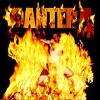 Pantera: Reinventing The Steel