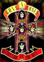 Guns N' Roses: Live At The Ritz [DVD]