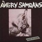 Angry Samoans: Inside My Brain