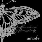 Secondhand Serenade: Awake