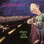 Dinosaur Jr.: Where You Been