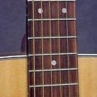 FG331
