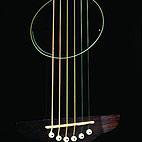 Fender: Stratocoustic