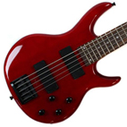 Ripwood 5 String