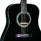 Fender: DG-11