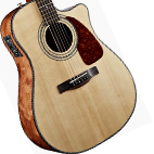 Fender: CD-220SCE