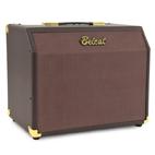Acoustic 25C