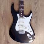Hohner: Rockwood LX200G