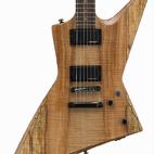 ESP: LTD FX-260
