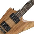 ESP: LTD FX-260SM