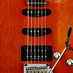 Satin Trans Fat Stratocaster HSS