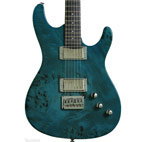 Fretlight Guitar: FG-561 Pro