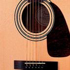 Fender: DG-14SCE