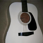 Fender: Gemini IV