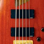 K5 Fieldy Signature Bass