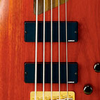 K5 Fieldy Signature Bass