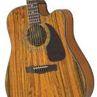 Fender: CD-220CE