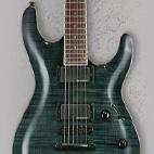 ESP: LTD H-250