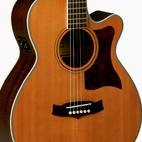 Tanglewood: TW45 NS