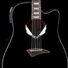 V Wing Dove