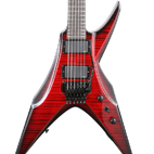 DBZ Guitars: Bird Of Prey