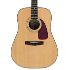 Fender: DG-20S