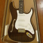 Cozart: Strat Semi-Hollow
