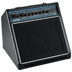 Acoustic: AG30