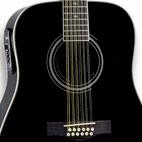 Fender: DG-16E-12
