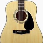 Fender: DG-5
