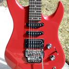 Yamaha: RGZ312