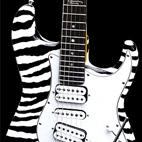 Master Caster: 2008 White Zebra