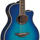Yamaha: APX700