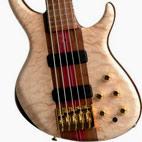 Tobias: Signature 5-String Bass