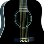 Fender: DG-16-12